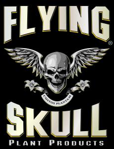 flyingskulllogo-blk-01