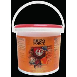 Rhizo2
