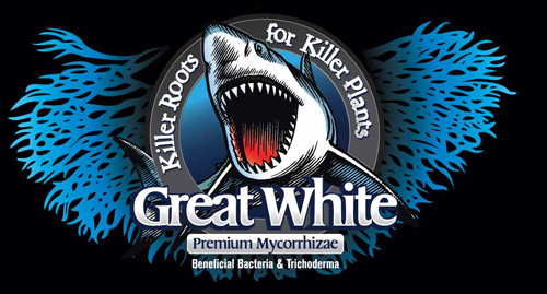 Great_White_label_logo_web