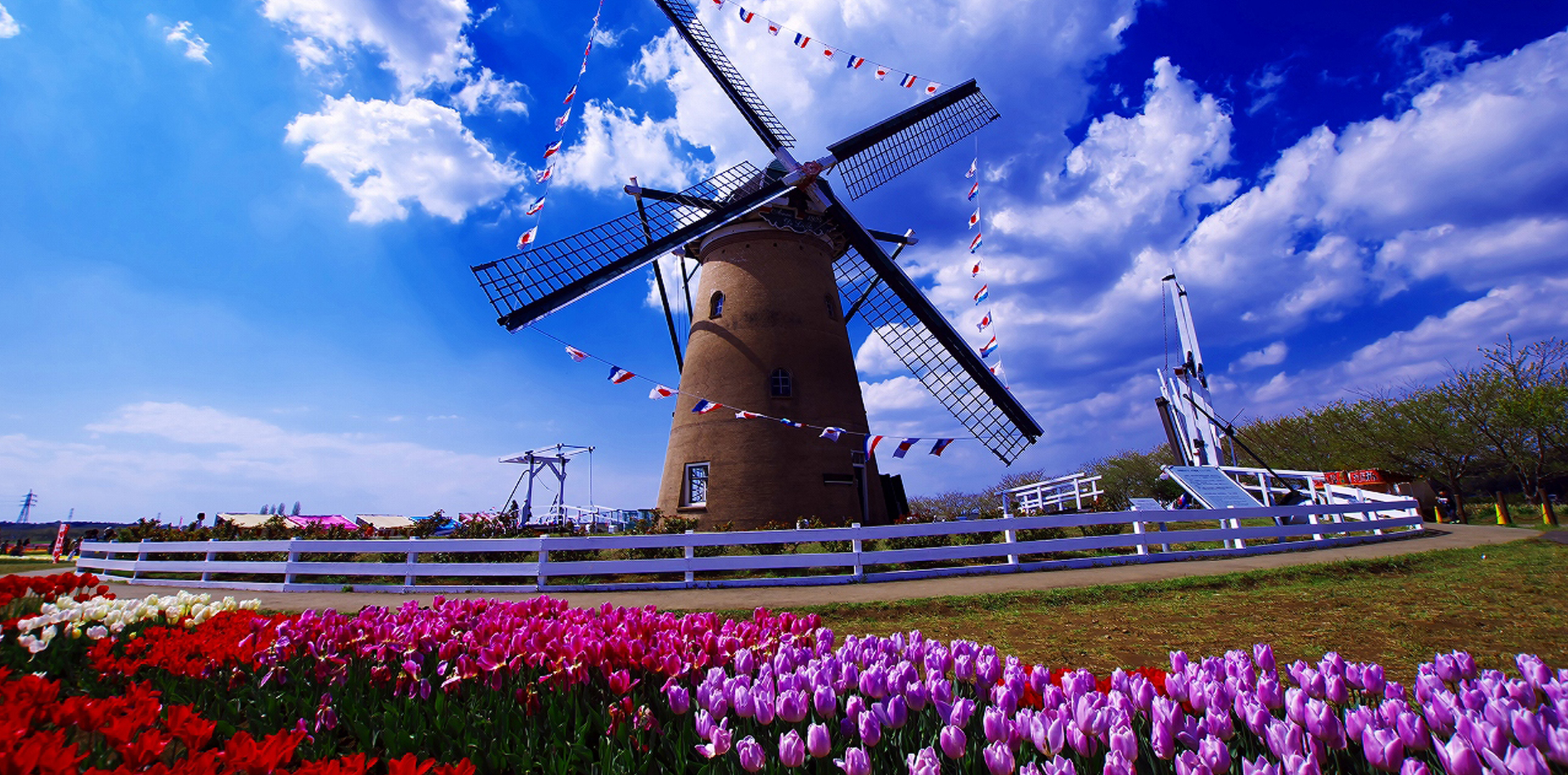 holland_web1
